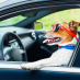 les astuces pour prendre votre chien durant un voyage